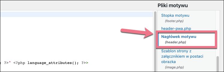 kod header wordpress