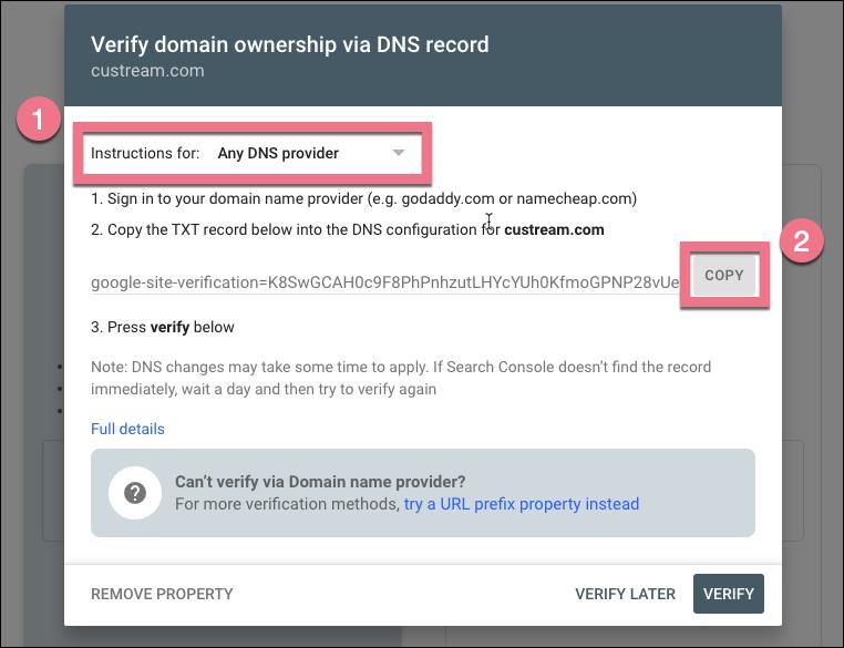 DNS record search console